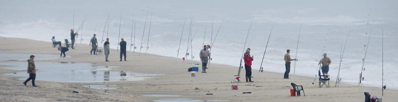 Virginia saltwater fishing virginia saltwater fishing for Virginia saltwater fishing